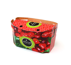 Produce Punnet Box used for agricultural produce packaging