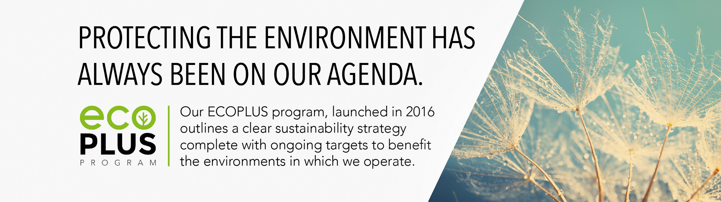 Protecting the environment has always been on our agenda
