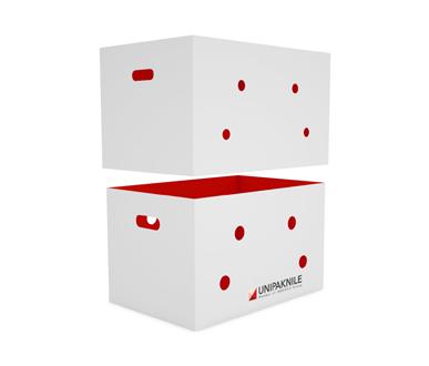 Telescopic Box for Fresh Produce- UNIPAKNILE-TB-02-003