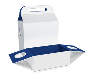 Tray Lunch Box