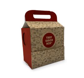 Tray-Lunch-Box